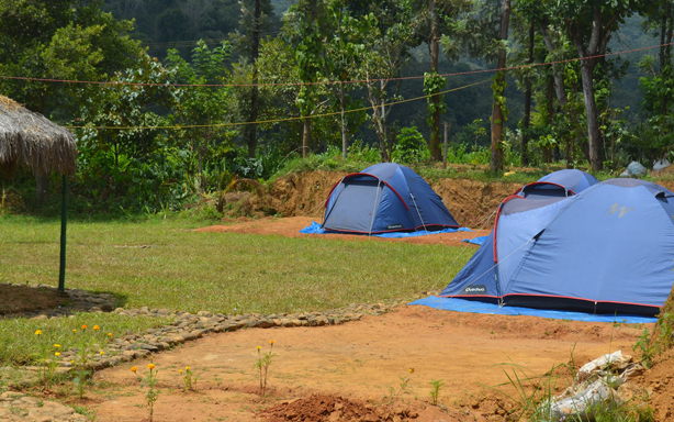 Wayanad honeymoon packages @ Rs, 8,999 Only - eKerala Tourism